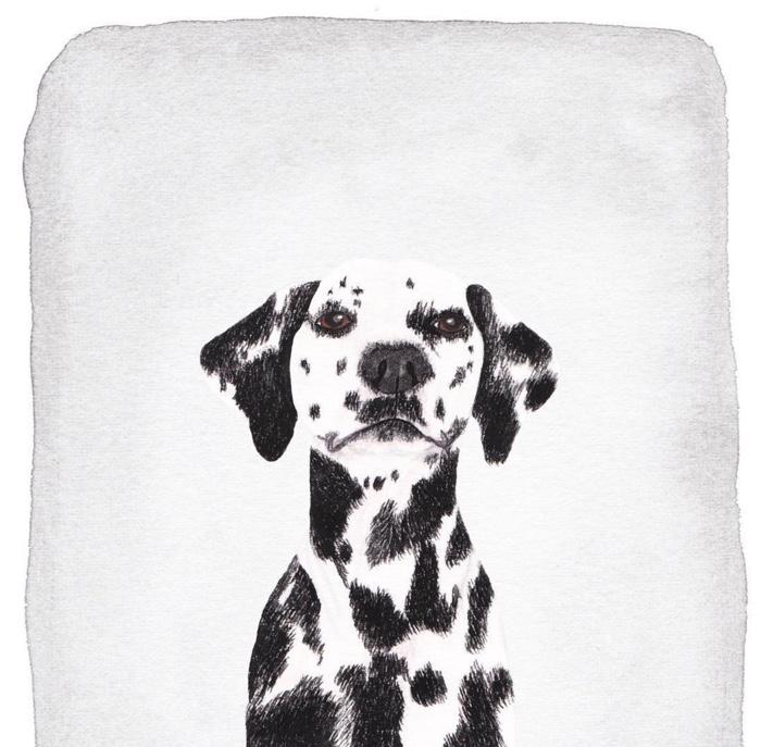 Louise_Jewell_custom_dog_portrait_5