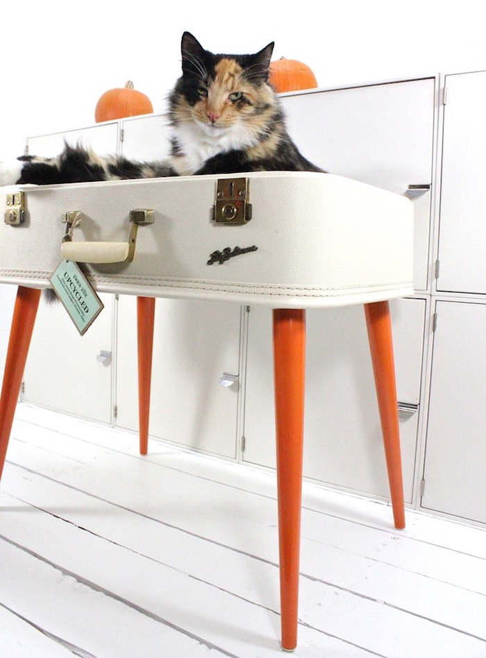 upcycled suitcase cat bed atomic attic