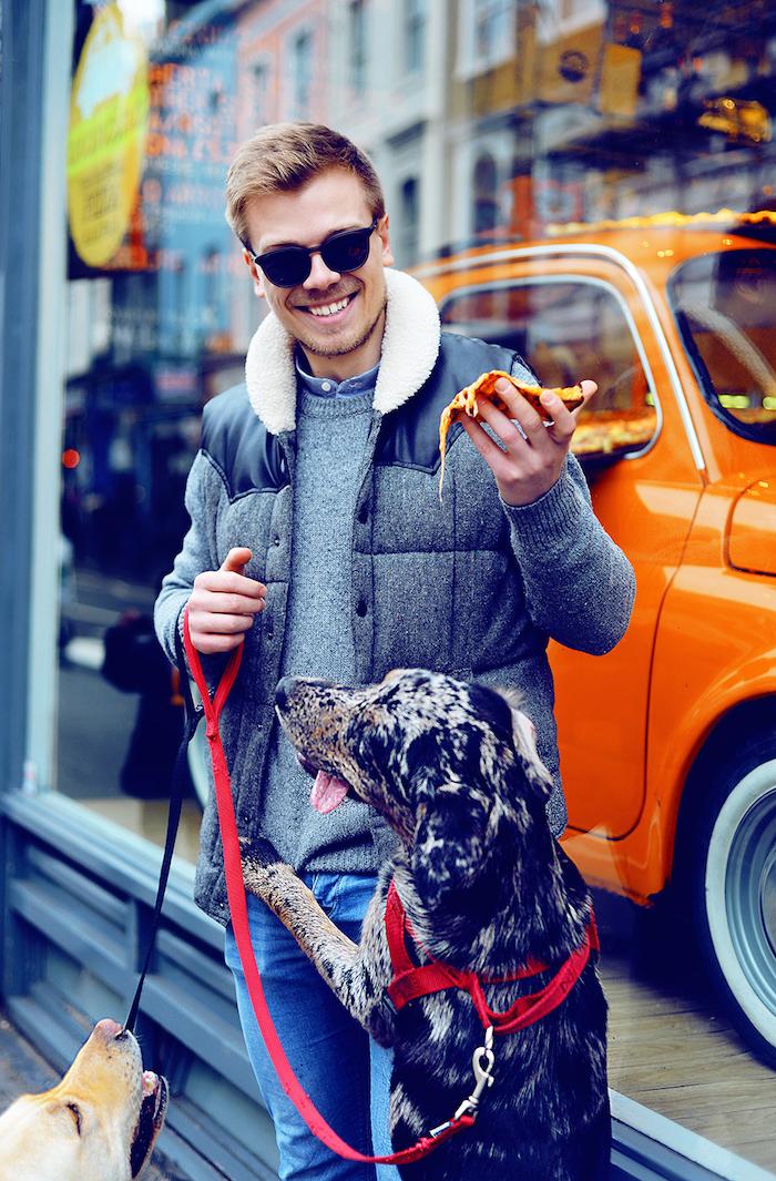 Phodography dog portrait photography by Ursula roxy aitchison