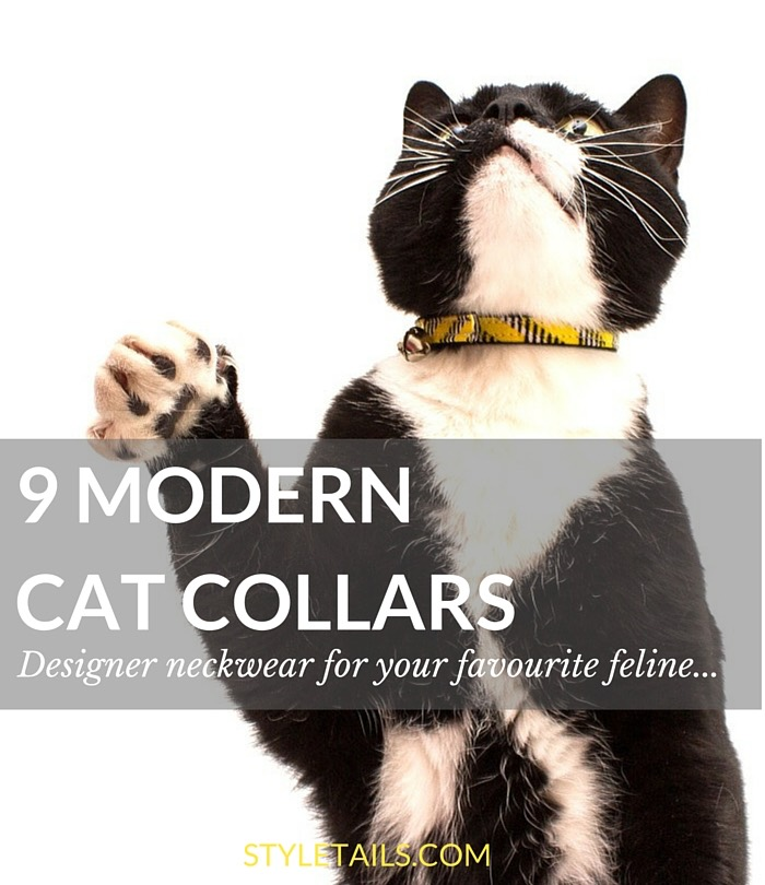 9 MODERN CAT COLLARS COVER 1