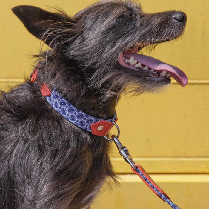 Hiro and Wolf Mosaic Dog Collar and Lead