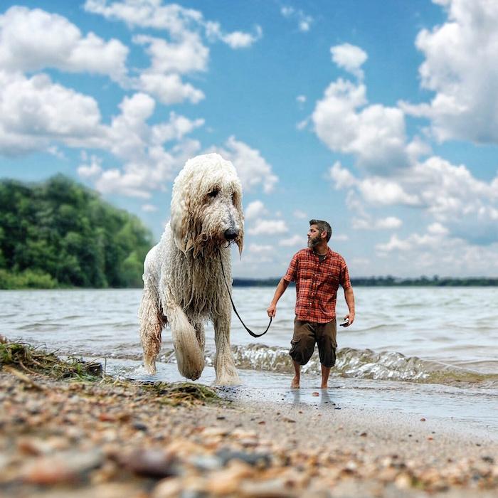 Chris Cline Dog Photographer