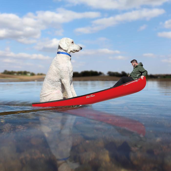 christopher_cline_jiji_dog_photographer_canoe_ride