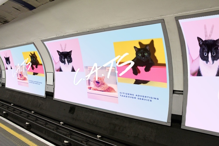 cats london tube takeover