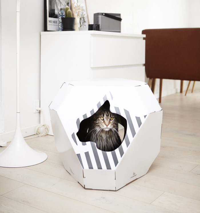 mia cardboard cat house and scratcher by mykotty