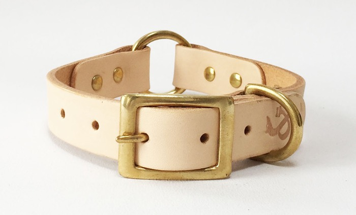 designer leather dog collars fetch and follow