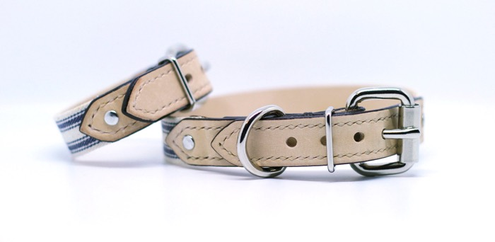 luxury leather dog collar bearytail