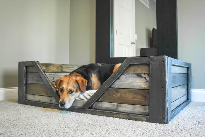 DIY dog bed ideas pallet