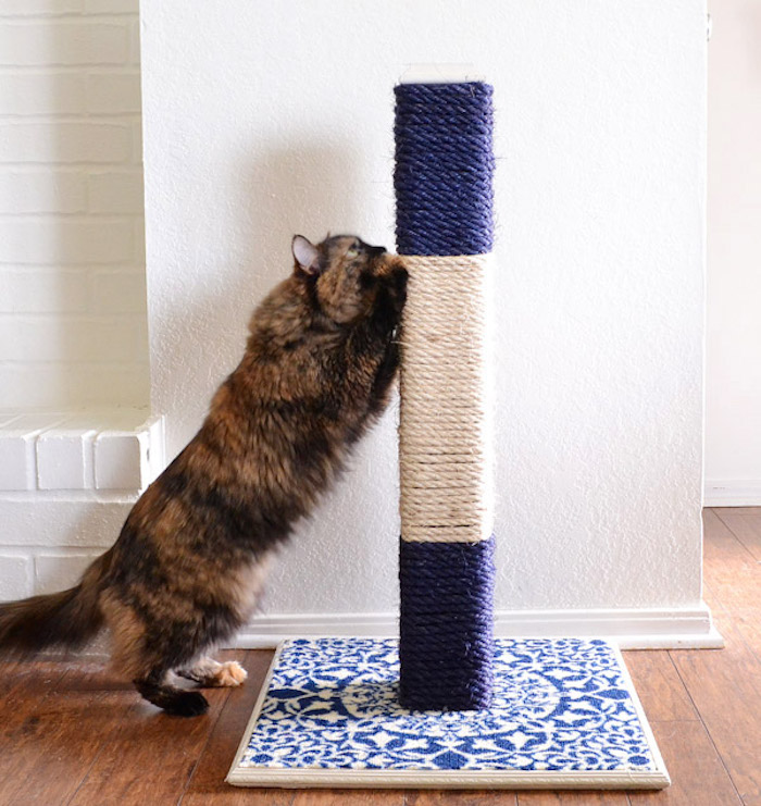 5 Of The Most Stylish Diy Cat Scratchers Styletails