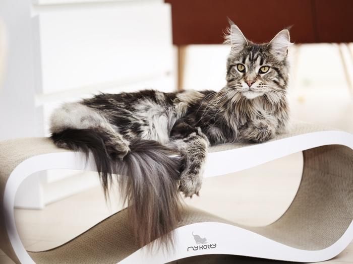 10 Best Designer Cat Scratchers Styletails