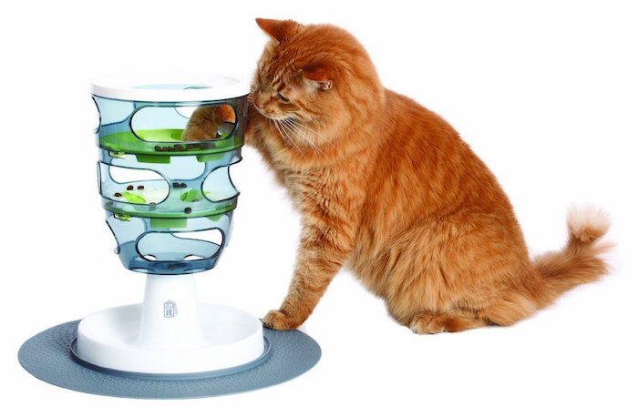 Best Slow Feeder For Cats For Wet Food