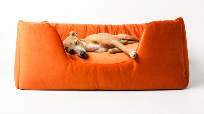 Charley Chau Deeply Dishy Dog Bed in Velour