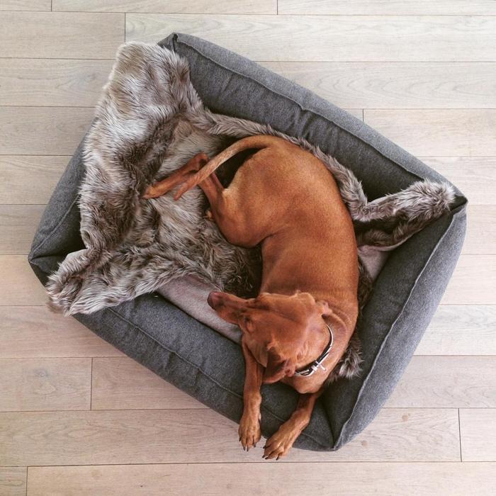 miacara luxury dog blanket