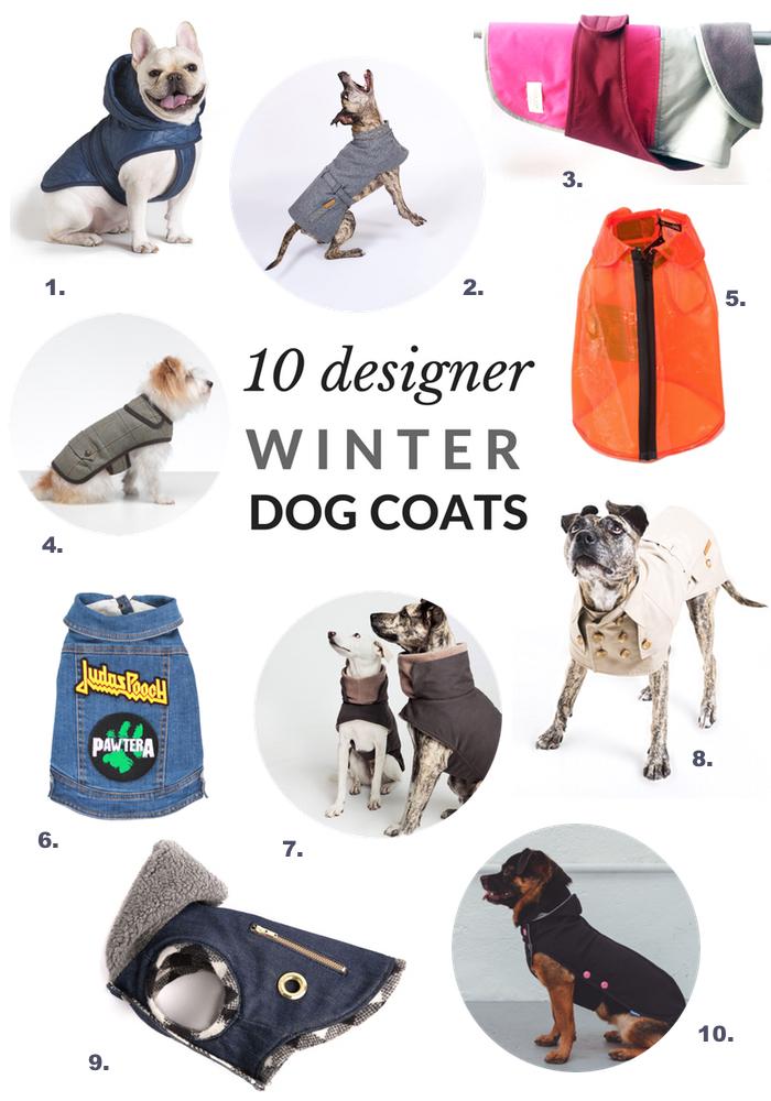 10 of the best designer dog coats for winter