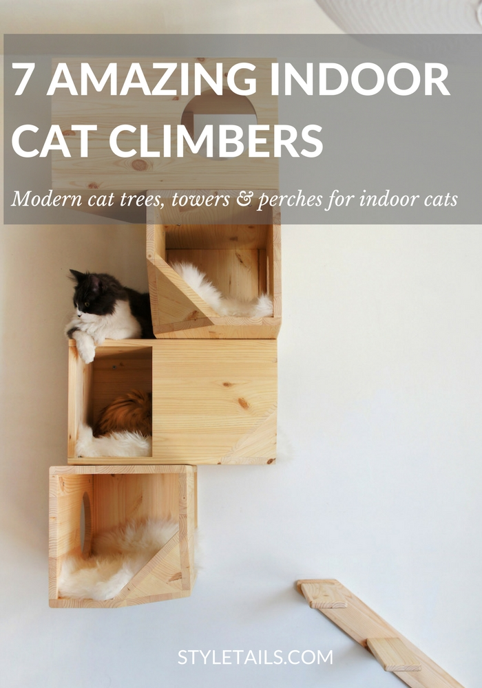 5 Amazing Indoor Cat Trees and Perches | STYLETAILS