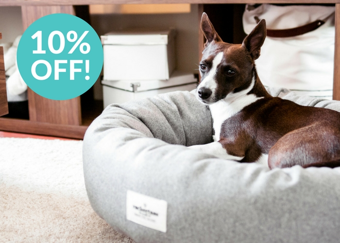 styletails discount dog beds