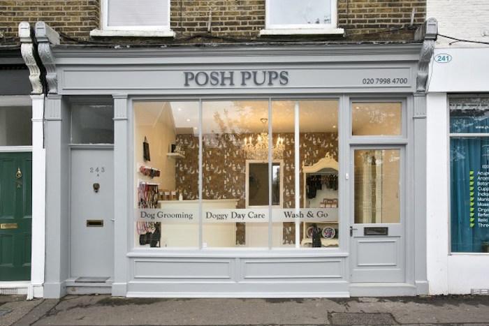posh pups richmond dog grooming