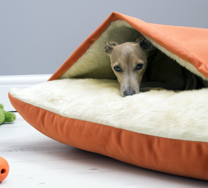 Snuggler Dog Bed
