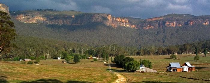 dog friendly camping blue mountains australia