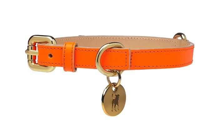 dogatella neon orange leather dog collar