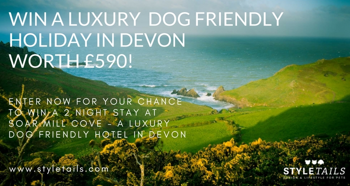 soar mill cove luxury dog friendly hotel devon