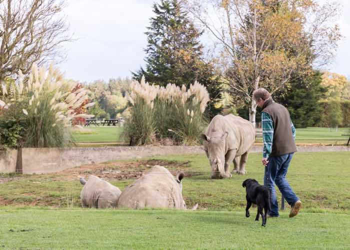 cotswold wildlife park dog friendly