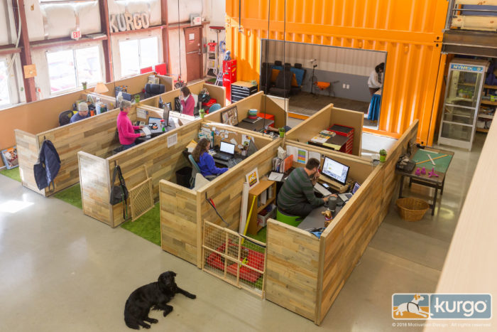 Dog Friendly Workplaces Kurgo