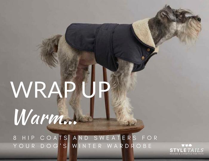 desginer dog sweaters and coats