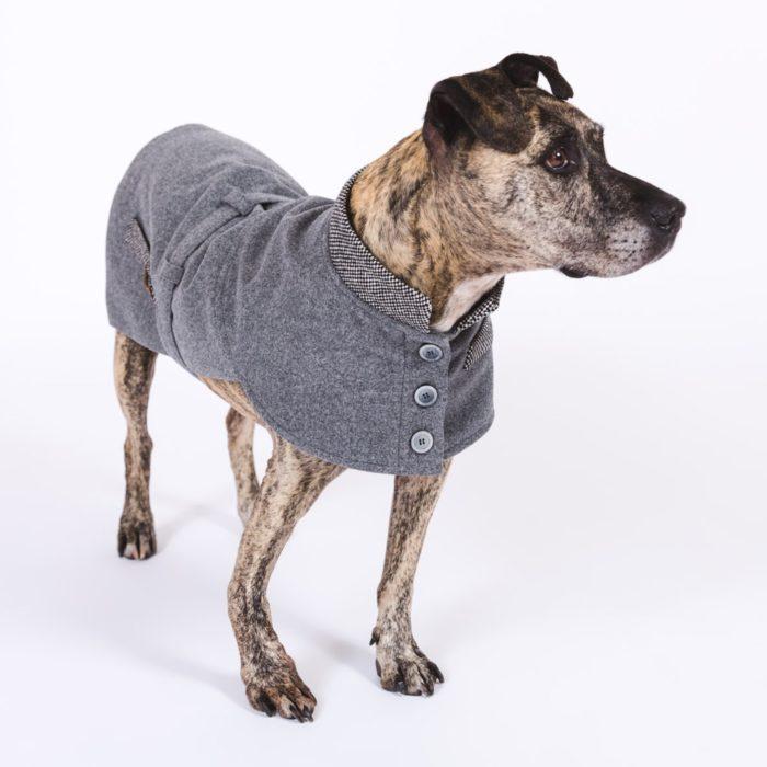 DESIGNER WINTER DOG COAT HAPPY STAFFY