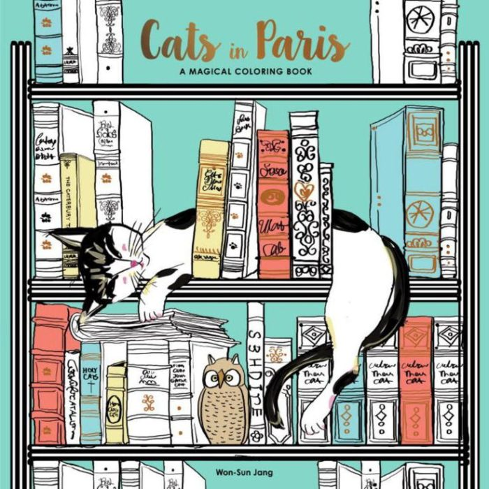CATS IN PARIS, BY WON-SUN JANG