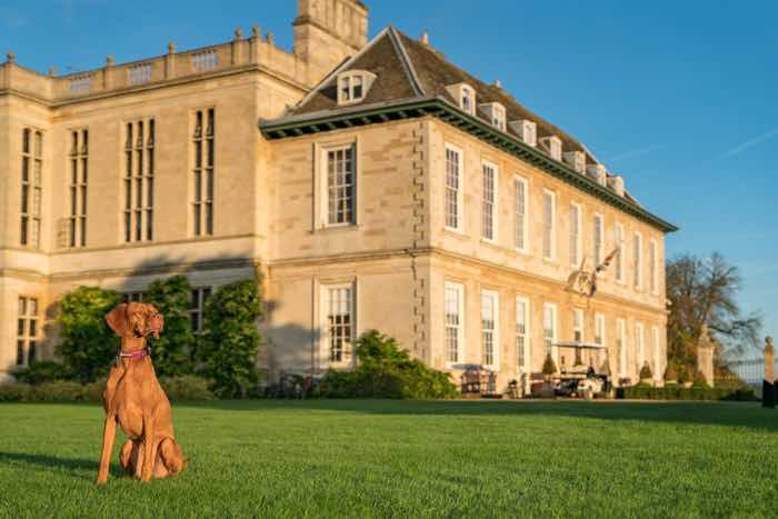 stapleford park luxury dog friendly hotel