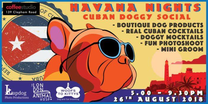 Havana Nights Cuban Doggy