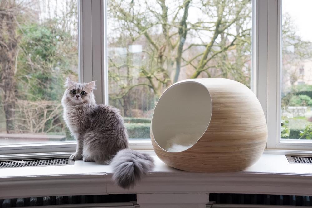 dandy cat ball designer bamboo cat cave
