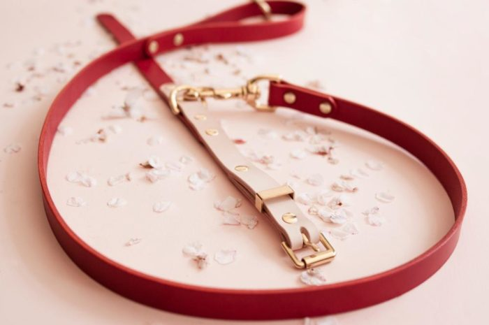 Two-Tone Leather Dog Collar Natural Red Vackertass