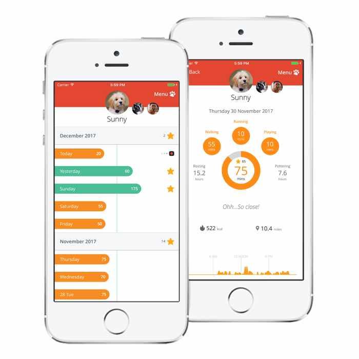 pitpat dog activity monitor app