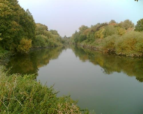 Hackney Marshes