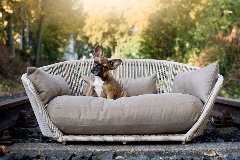 Laboni vogue dog bed styletails