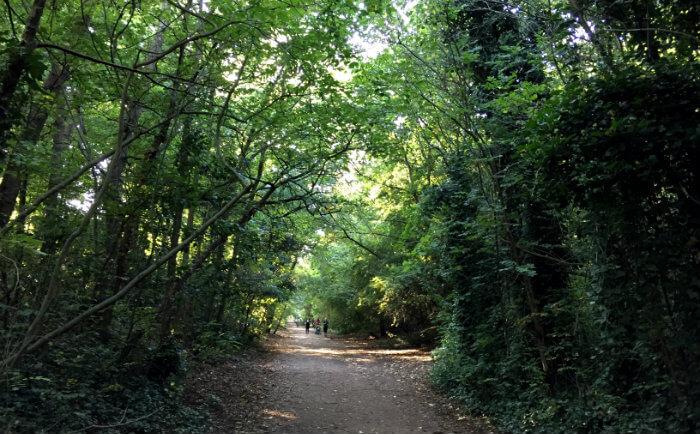 Parkland London