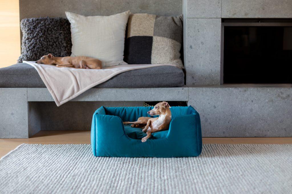 charley chau deeply dishy dog bed
